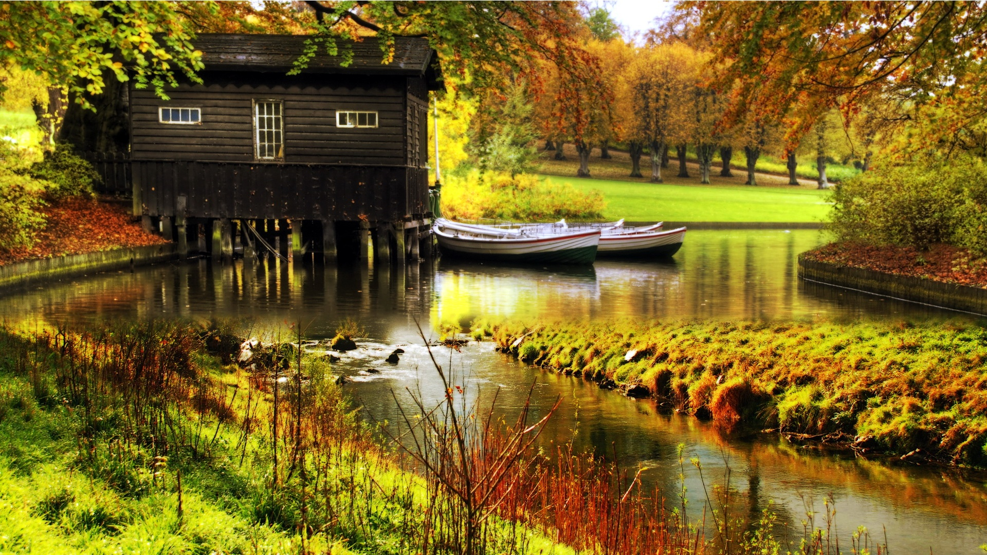 Dream Cottage - Beautiful Scenery